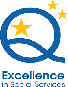 Excellence Mark